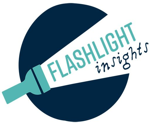 Flashlight Insights
